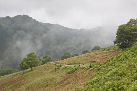 Alrededores de la casa rural de Artaunsoro