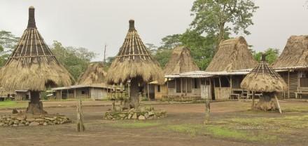 Isla de Flores. Aldea tradicional de Wogo. Representación de los clanes. Ngadhu