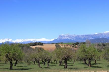 La Peña Montañesa desde el Valle de Susía, Sobrarbe, Huesca, Aragón