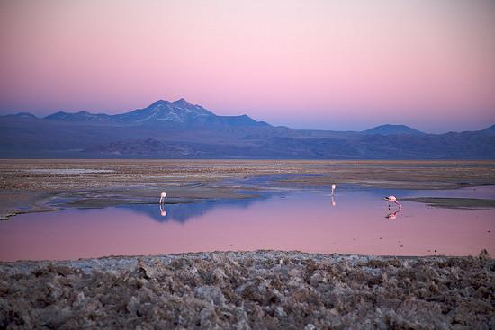 El salar del desierto de Atacama en Chile