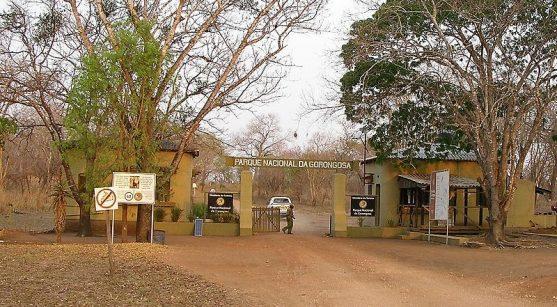 Mozambique: Parque Nacional de Gorongosa