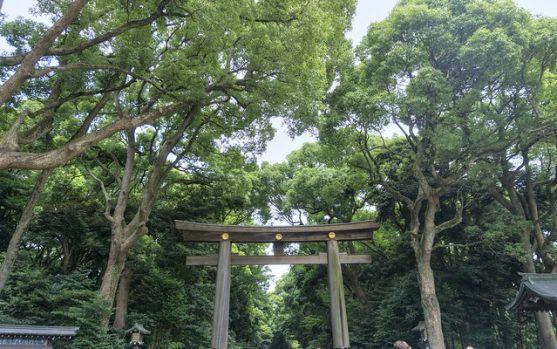 Viajes a tokio japon