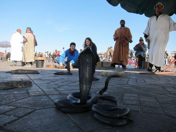 Una cobra en Marruecos