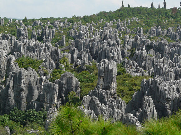 Bosque de Piedra, China