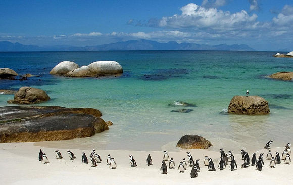 Boulders, Sudáfrica