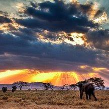 Viajes a Kenia y Tanzania en Nochevieja