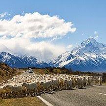 Viajes a Nueva Zelanda