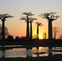 Viajes a Madagascar en Semana Santa