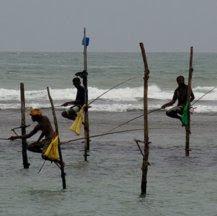 Viajes a Sri Lanka en grupo