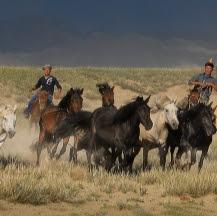 Viajes a Mongolia