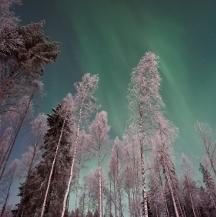 Viajes a Laponia Finlandesa