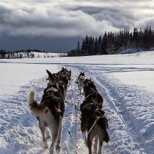 Viajes a Laponia Noruega