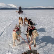 Fin de año en Laponia