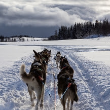 Noruega en grupo: aventura Sami y auroras boreales