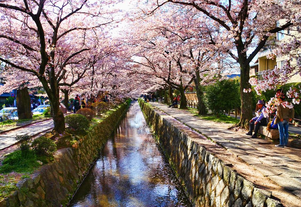 Camino del filósofo Kioto Japón