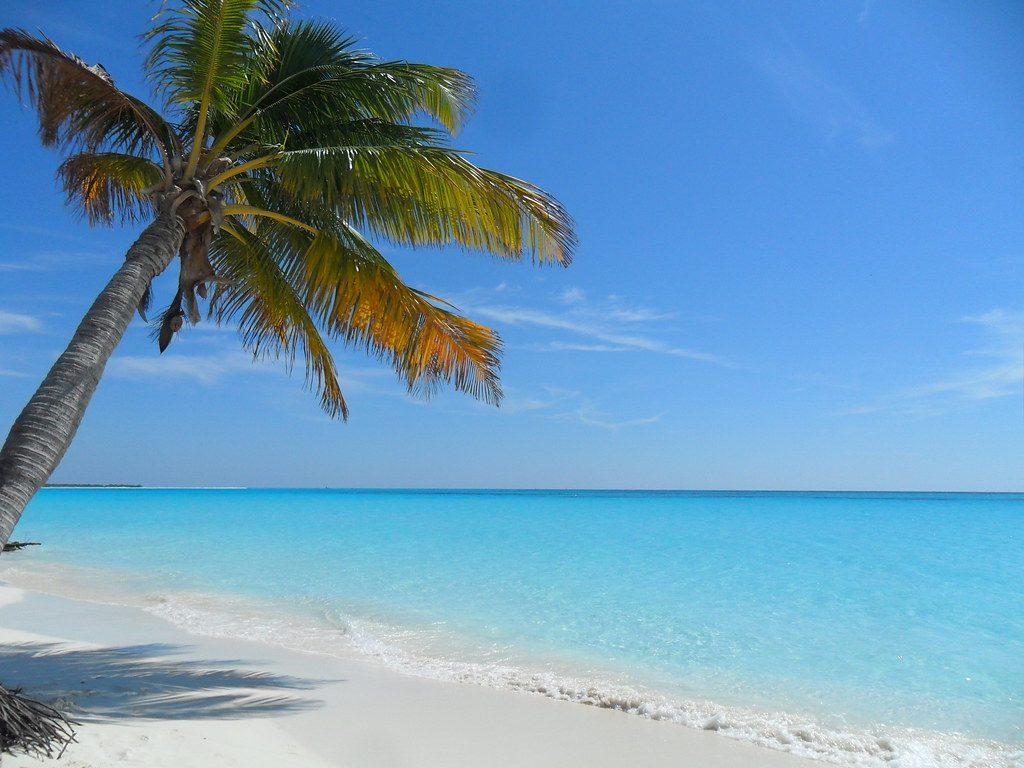 Cayo Largo mejores playas de Cuba