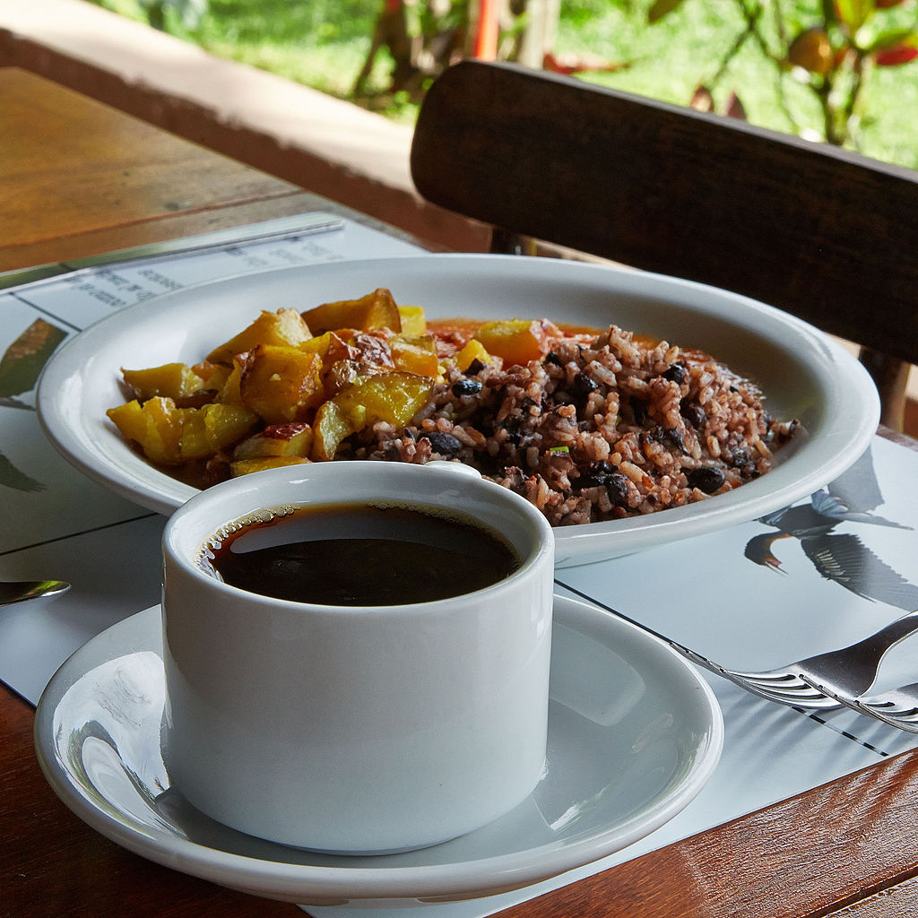 Gallo Pinto comidas típicas de Costa Rica