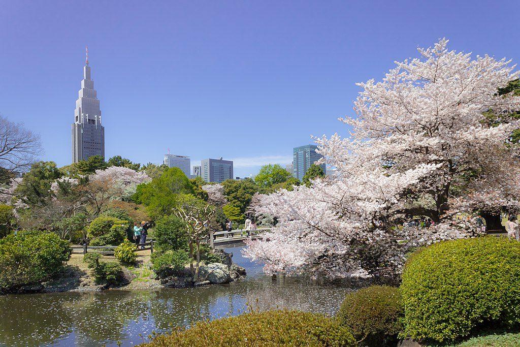 Jardines de Shinjuku Gyoen Tokio