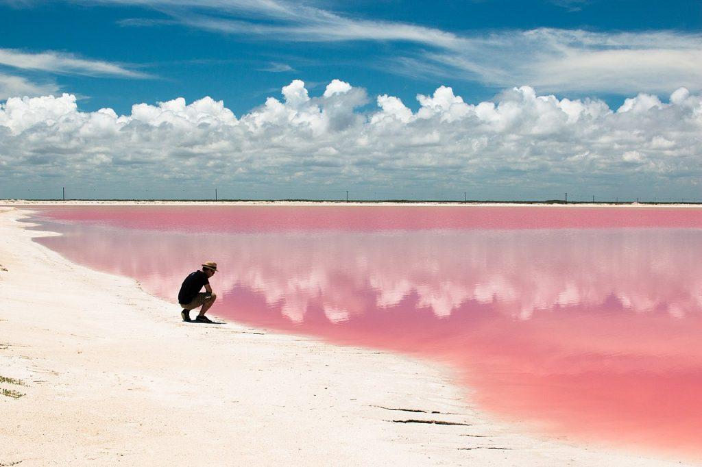 Playa Rosa, Las Coloradas (Yucatán)