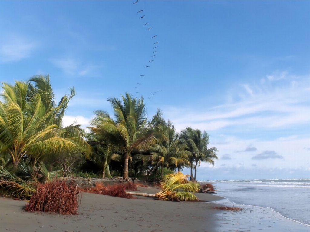 Juanchaco y Ladrilleros Playas de Colombia