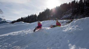 Trineo en los Alpes Suizos