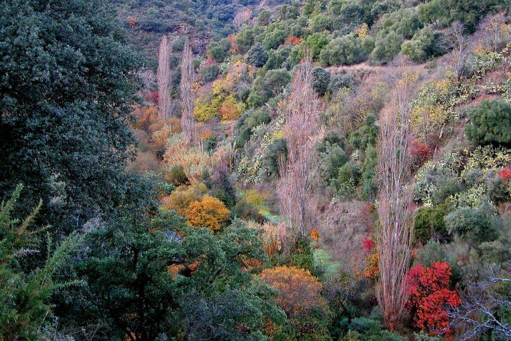 Valle del Genal viajes fotográficos por España