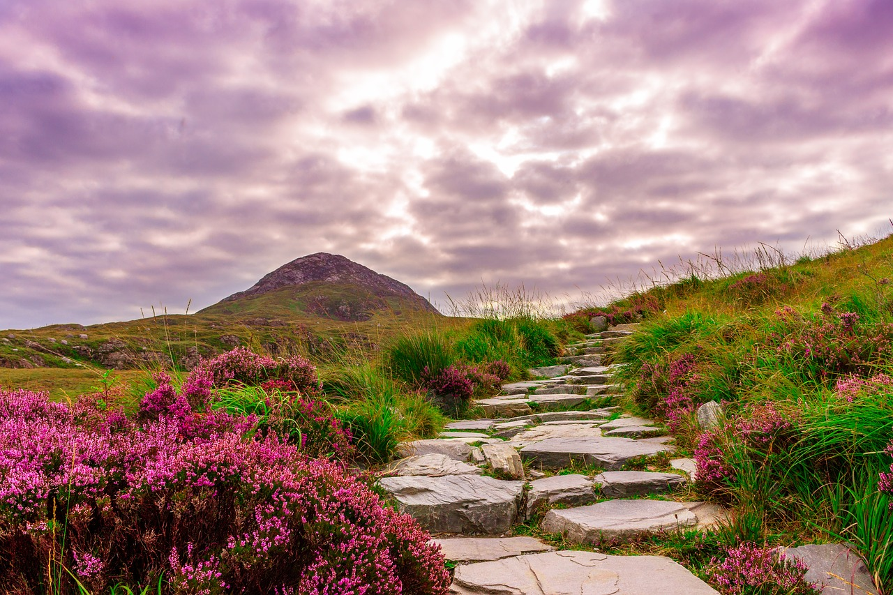 Irlanda Clásica