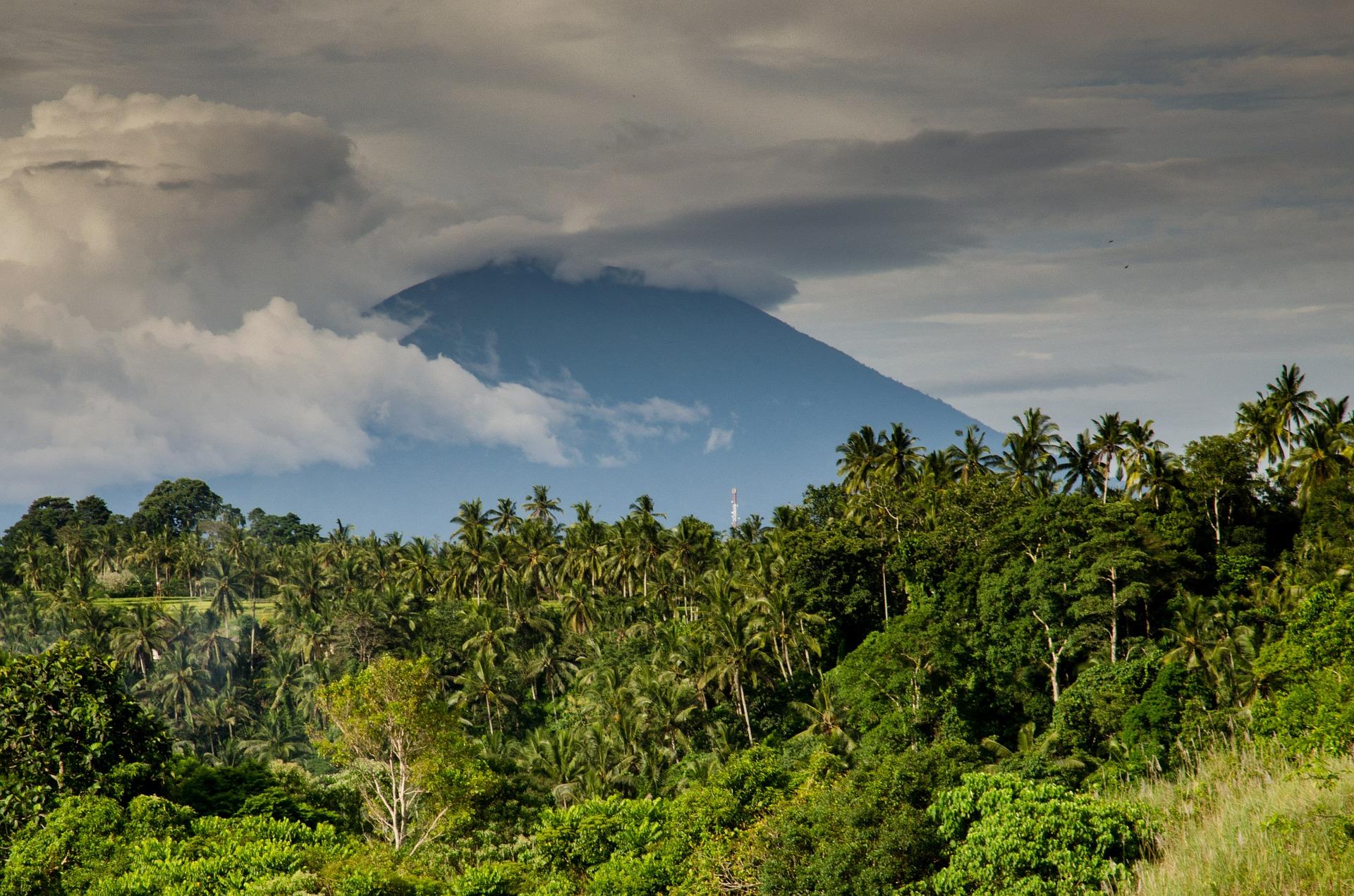 Costa Rica para singles con Tortuguero, el volcán Arenal, Monteverde y Manuel Antonio