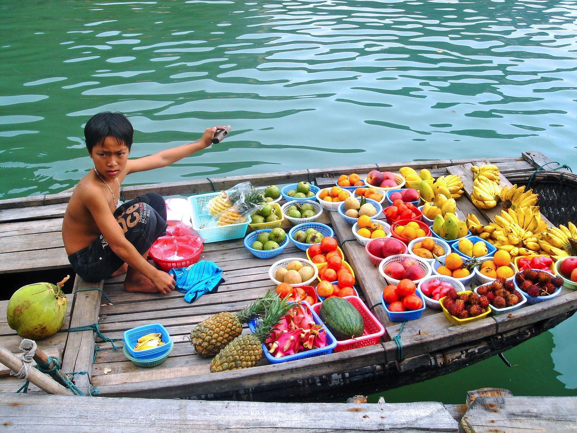Fin de año en Vietnam: Ruta completa de norte a sur