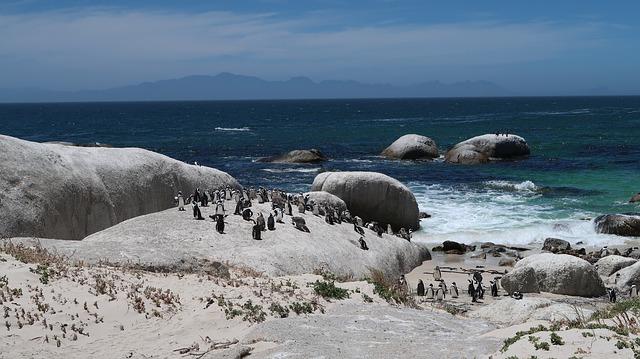 Puente diciembre en Sudáfrica