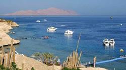 Buceo en el Sharm el Sheikh (Enero y Febrero) en grupo privado