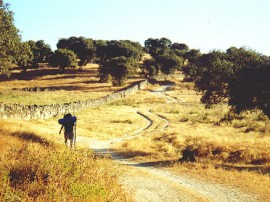 Circuitos por Badajoz