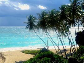 Circuitos por Barbados