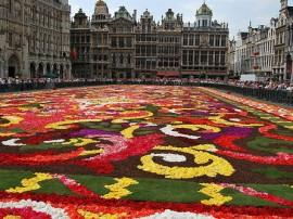 Circuitos por Bruselas