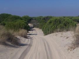 Circuitos por Cádiz
