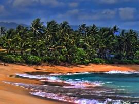 Circuitos por California y Hawai