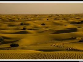 Circuitos por Dubái