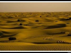 Circuitos por Dubai y Omán