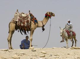 Circuitos por Egipto y Jordania