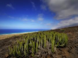 Circuitos por Fuerteventura