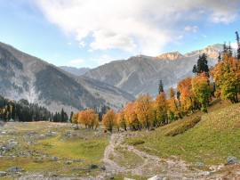 Circuitos por Himalaya indio