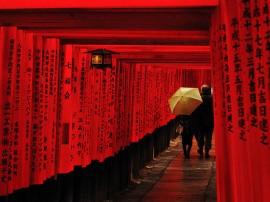Circuitos por Kioto