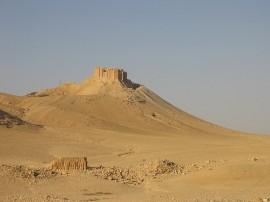 Circuitos por Palmira