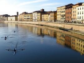 Circuitos por Pisa