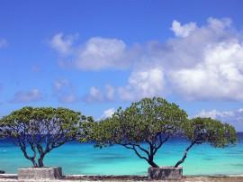 Circuitos por Polinesia Francesa