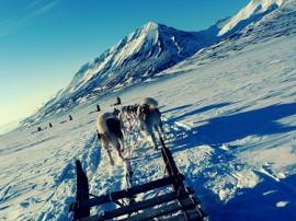 Circuitos por Svalbard